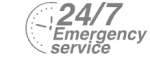 24/7 Emergency Service Pest Control in West Wickham, BR4. Call Now! 020 8166 9746